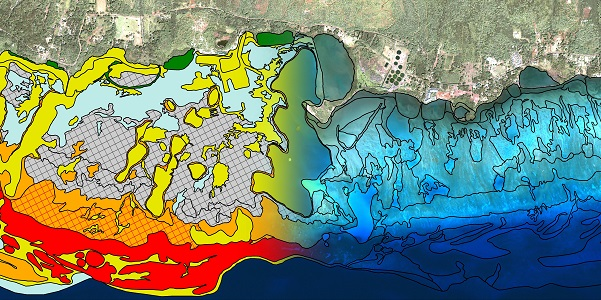 and the st thomas east end reserve biomapper a fully interactive online feature designed to let users explore benthic habitat mapping data
